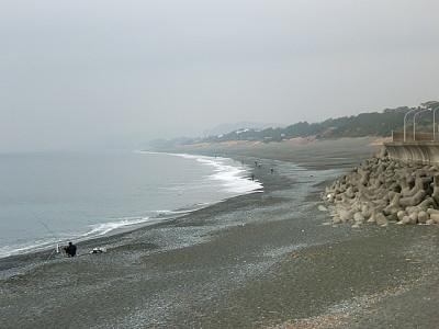 画像:A.M.8:00頃の大磯海岸です。平ったいのでも上がったんでしょうか?ウェ~ディングの人が多かったですよ。