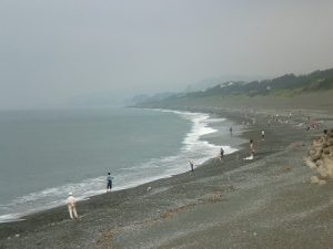 【日況】'16,6,19(日) 大磯周辺釣り状況